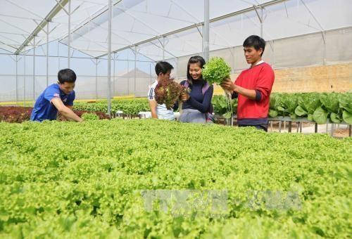 Rusia bersedia memperluas kerjasama pertanian dengan Vietnam dan ASEAN - ảnh 1