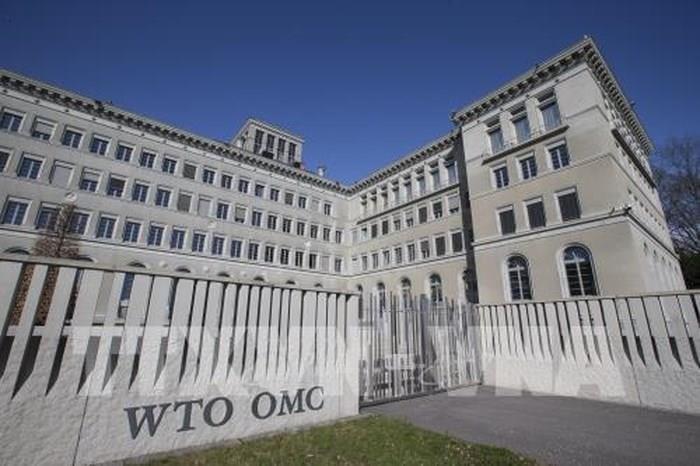 WTO mengeluarkan prediksi yang lebih optimis tentang perdagangan global - ảnh 1