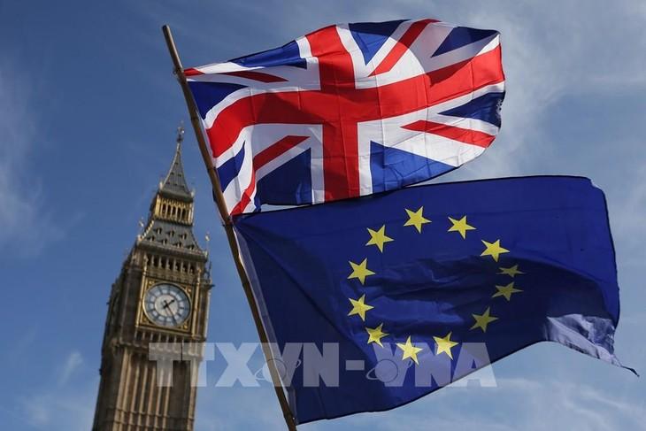 Inggris dan Uni Eropa memulai putaran ke-7 perundingan tentang hubungan bilateral pasca Brexit - ảnh 1