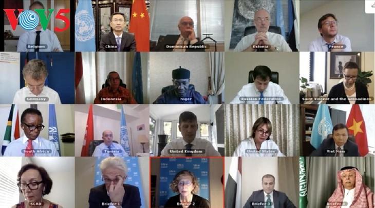 Le Vietnam soutient le rapport de l'envoyé spécial du Secrétaire général de l'ONU pour le Yémen - ảnh 1