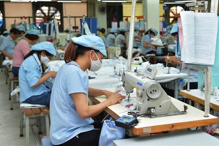 Kementerian Industri dan Perdagangan Vietnam mengesahkan daftar badan usaha ekspor yang prestisius - ảnh 1