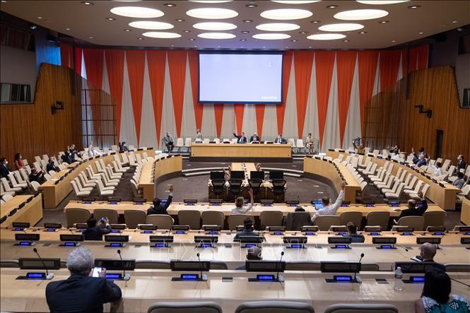 Ketua DK PBB menolak permintaan AS tentang pengenaan kembali sanksi terhadap Iran - ảnh 1