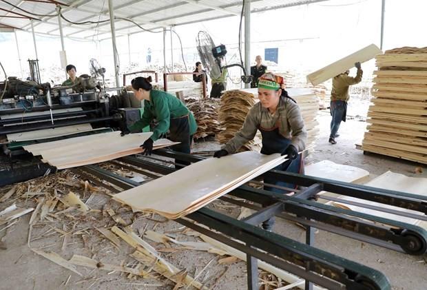 ASEAN Umumkan Laporan tentang Produktivitas Kerja di Kawasan - ảnh 1