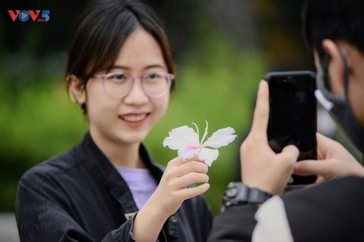 Bunga Ban Bermekaran Lebih Dini di Kota Ha Noi - ảnh 6