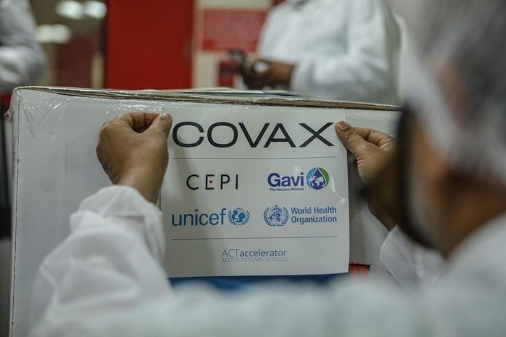 Rusia Nyatakan Kesediaannya untuk Berpartisipasi pada Fasilitas COVAX - ảnh 1
