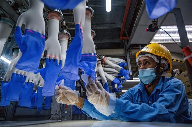 ASEAN+3 Berharap Ekonomi Pulih Cepat Berkat Adanya Vaksin Covid-19 - ảnh 1