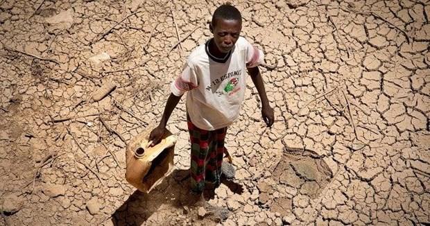 PBB Peringatkan 2,8 Juta Orang Hadapi Bahaya Kerawanan Pangan di Somalia - ảnh 1