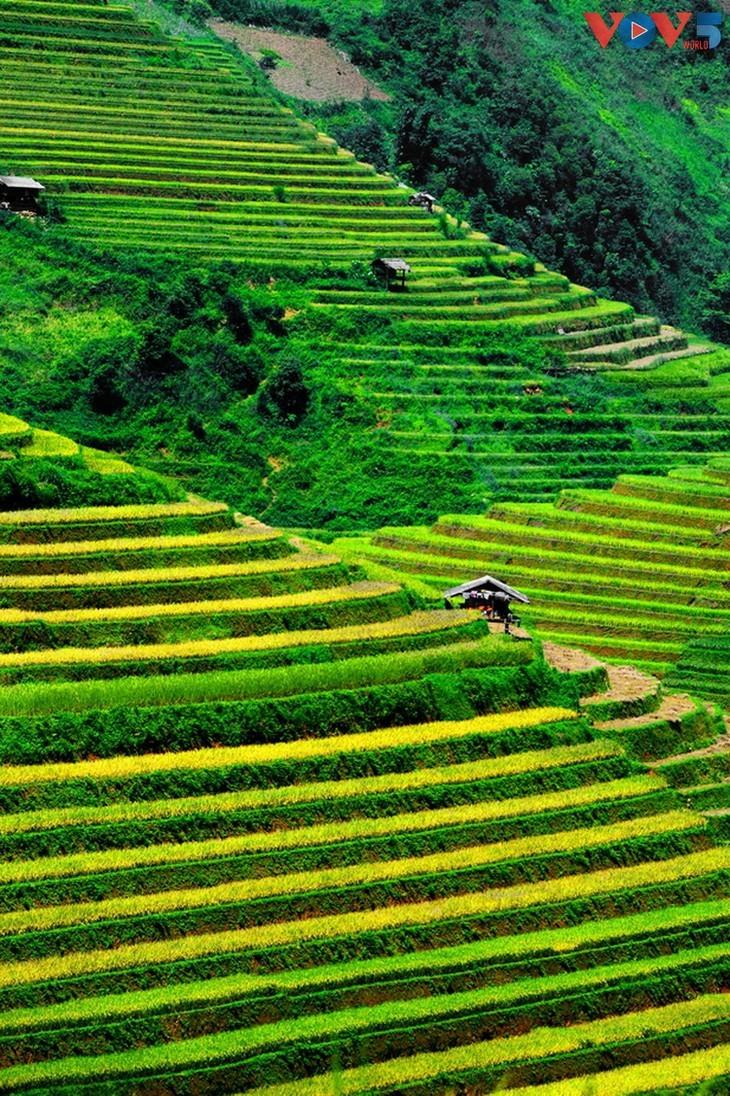 Keindahan Hoi An dan Sa Pa, Dua Destinasi yang Paling Fotogenik di Vietnam - ảnh 13