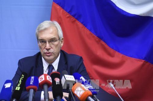 俄罗斯不排除恢复与北约的军事关系 - ảnh 1