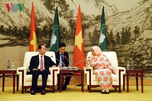 越南和非洲各国一向互相支持和帮助 - ảnh 1