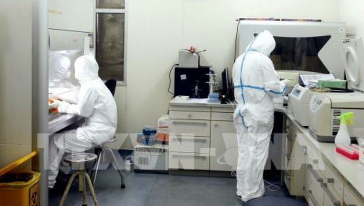 COVID-19:越南有6个单位可开展新冠病毒肺炎检测 - ảnh 1