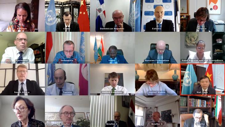 联合国安理会支持政治解决叙利亚问题 - ảnh 1