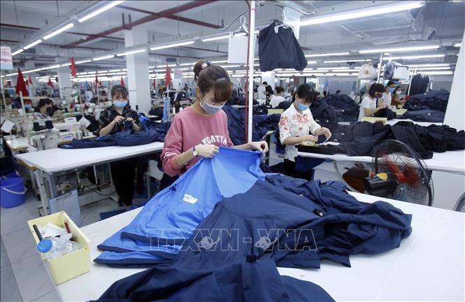 全球风险观察网站:  EVFTA和EVIPA为越南经济提供更多收益来源 - ảnh 1