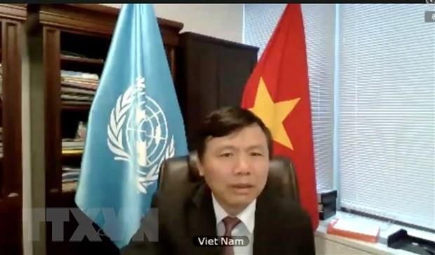 越南对UNITAD调查追究恐怖组织罪行表示欢迎 - ảnh 1