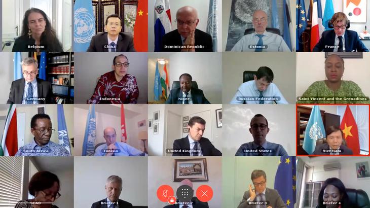 越南: 国际社会应加大对中非共和国的支持 - ảnh 1