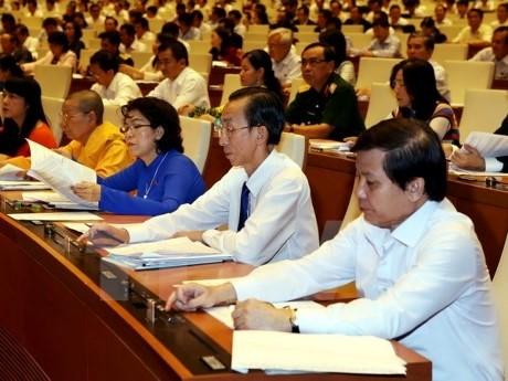 越南一向尊重和保障网络空间人权 - ảnh 1