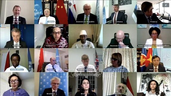 越南与联安理会:越南呼吁国际社会助力叙利亚应对新冠肺炎疫情 - ảnh 1