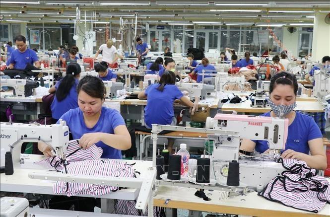 国际媒体评估EVFTA给越南带来的机遇 - ảnh 1