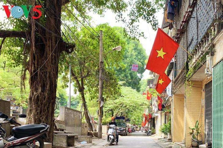 风中飘扬的鲜红国旗迎接独立日 - ảnh 18
