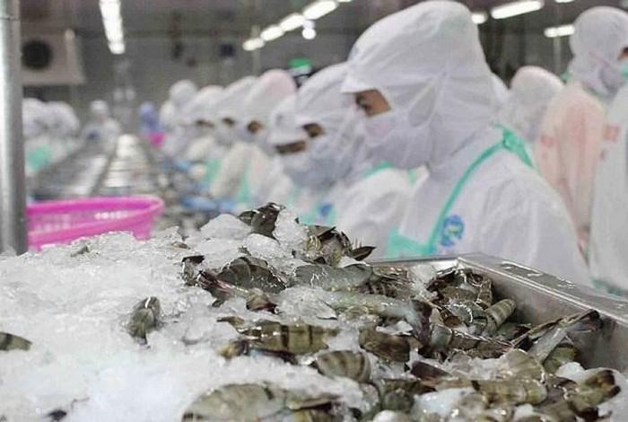 12家越南企业再向沙特阿拉伯出口水产品 - ảnh 1