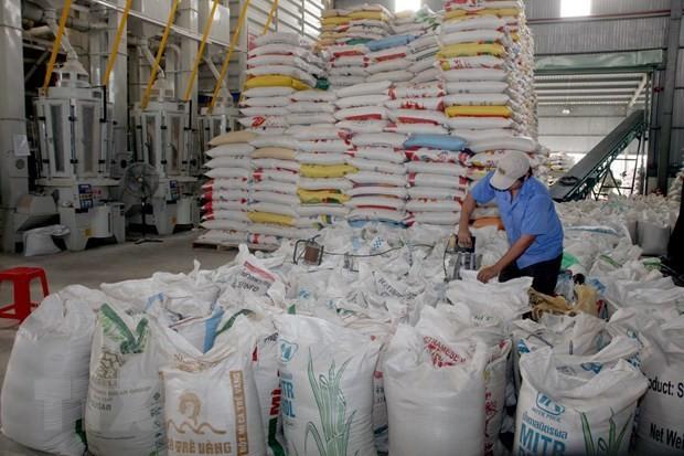 九龙江平原大米逐步肯定了越南大米品牌在市场上的地位 - ảnh 2