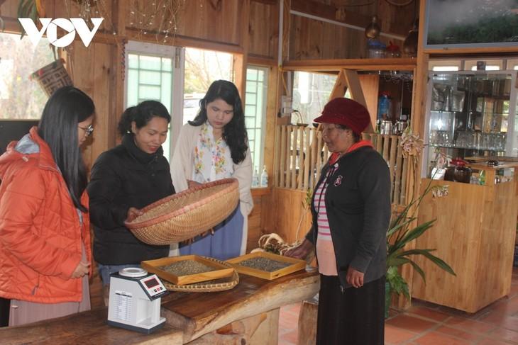戈豪族女孩靠阿拉比卡咖啡成功创业 - ảnh 2