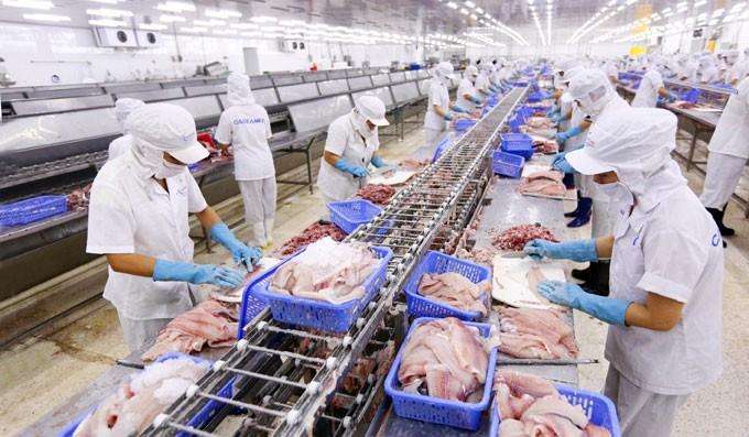 越南经济中长期前景乐观 - ảnh 1
