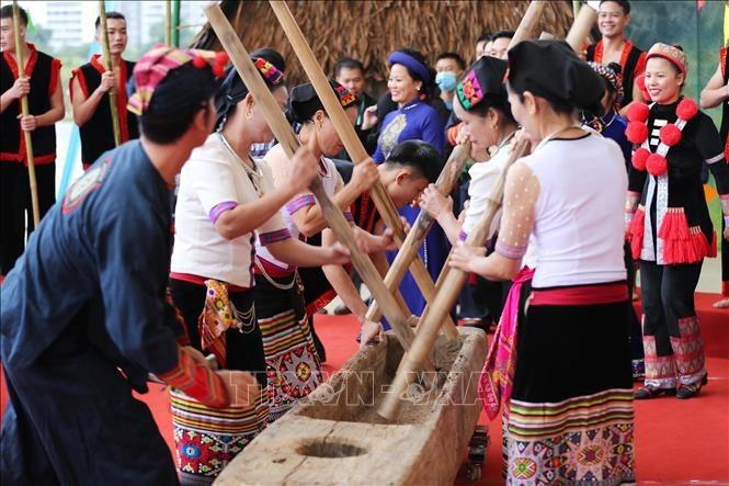 世界文化多样性促进对话和发展 - ảnh 8