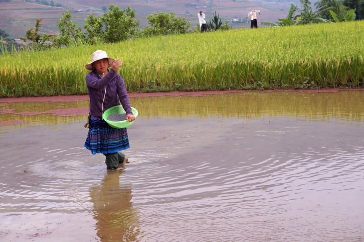 西北灌水季节之美 - ảnh 6