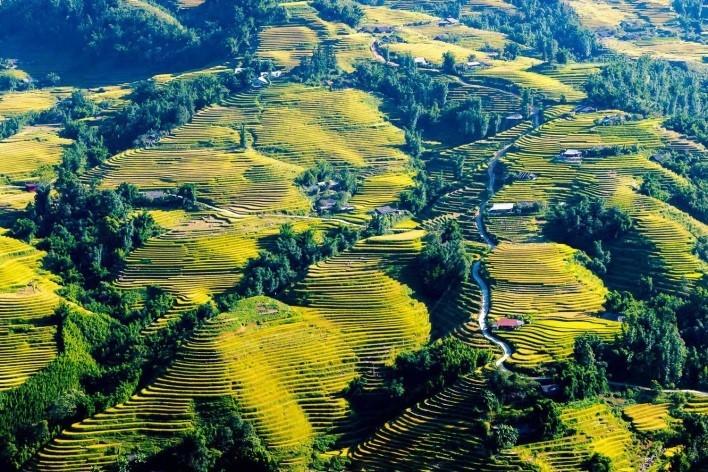 吸引外国游客的越南旅游目的地 - ảnh 4