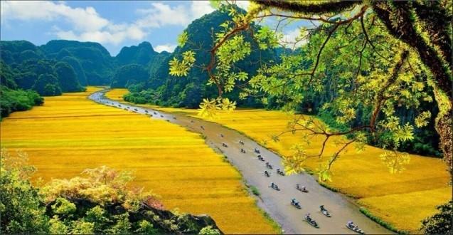 吸引外国游客的越南旅游目的地 - ảnh 8