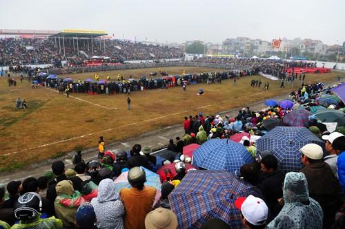 First buffalo fighting festival in Hanoi  - ảnh 1