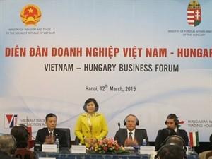 Vietnam, Hungary strengthen business ties - ảnh 1
