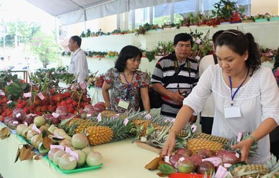 Strengthening Vietnamese foothold in overseas fruit markets - ảnh 2