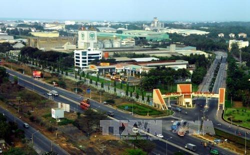Overseas Vietnamese contribute to national development  - ảnh 1