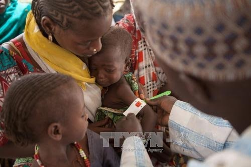 UN calls for 5.6 billion USD donation for famine fighting in four countries - ảnh 1