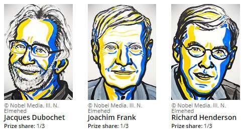 The Nobel prize in Chemistry triggers a revolution in biochemistry - ảnh 1