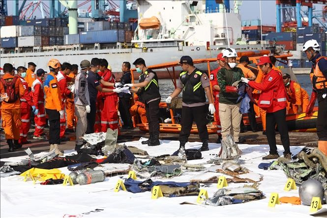 Search for missing Lion Air flight set to last seven days - ảnh 1