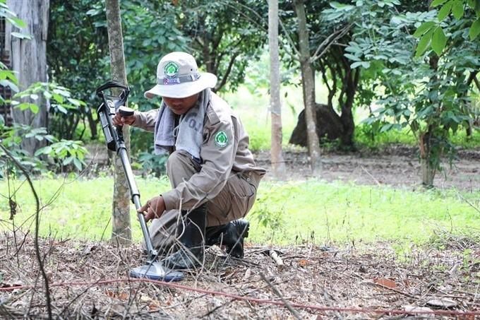 Vietnam makes progress in landmine clearance  - ảnh 1