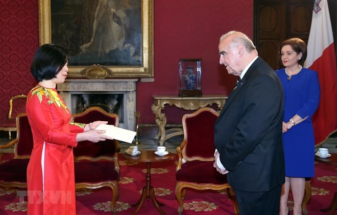 Vietnam wants to promote relations with Malta: Ambassador - ảnh 1