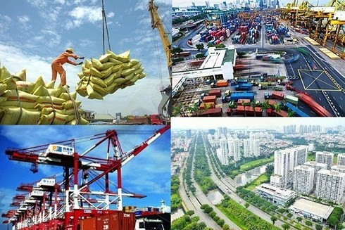 Vietnam's economic growth in 2020 driven by traditional sectors - ảnh 1