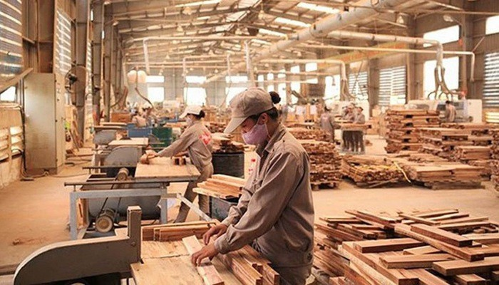 Vietnam's forestry exports expected to reach 2020 target of 12 billion USD - ảnh 1