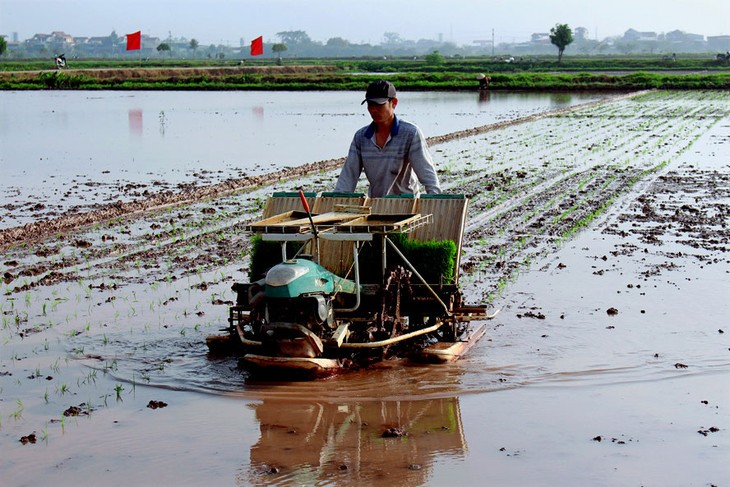 Farmers in Hanoi's outlying districts boost agricultural mechanization - ảnh 2