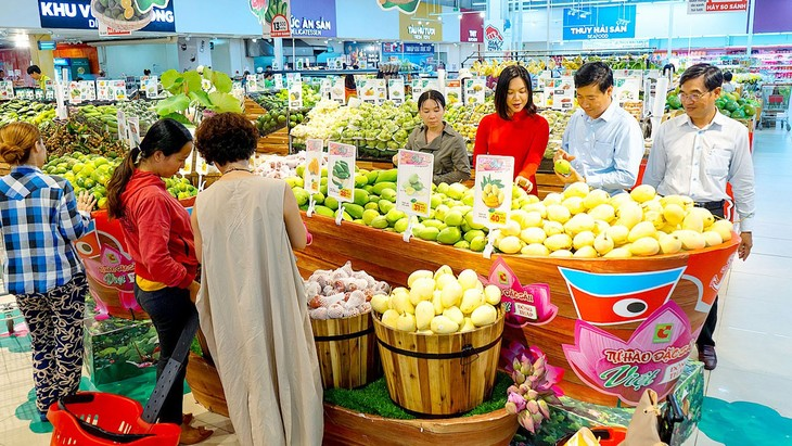 Vietnamese people opt for Vietnamese products to save businesses in pandemic - ảnh 1