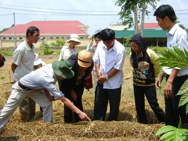 Vietnam boosts training of key occupations in line with international standards - ảnh 2