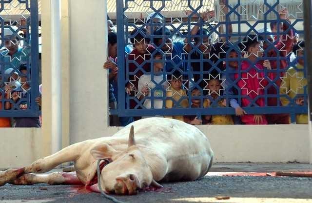 Eid Al-Adha, the Festival of Sacrifice, in Oman - ảnh 4