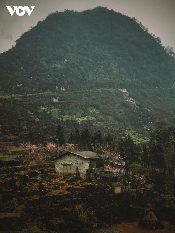 Stunning beauty of Ha Giang province - ảnh 14