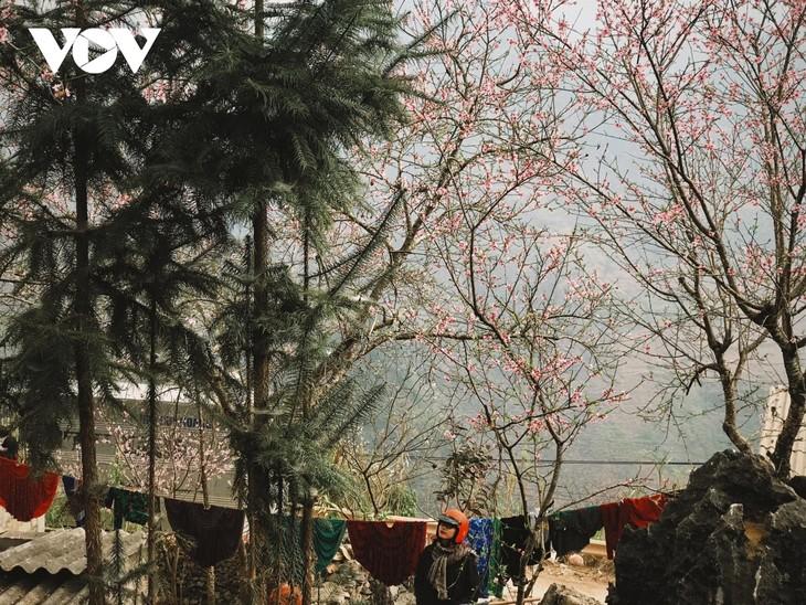 Stunning beauty of Ha Giang province - ảnh 15