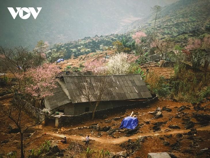 Stunning beauty of Ha Giang province - ảnh 6