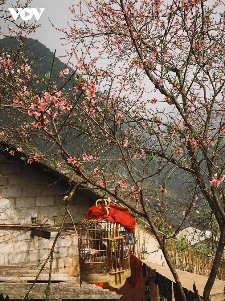 Stunning beauty of Ha Giang province - ảnh 8